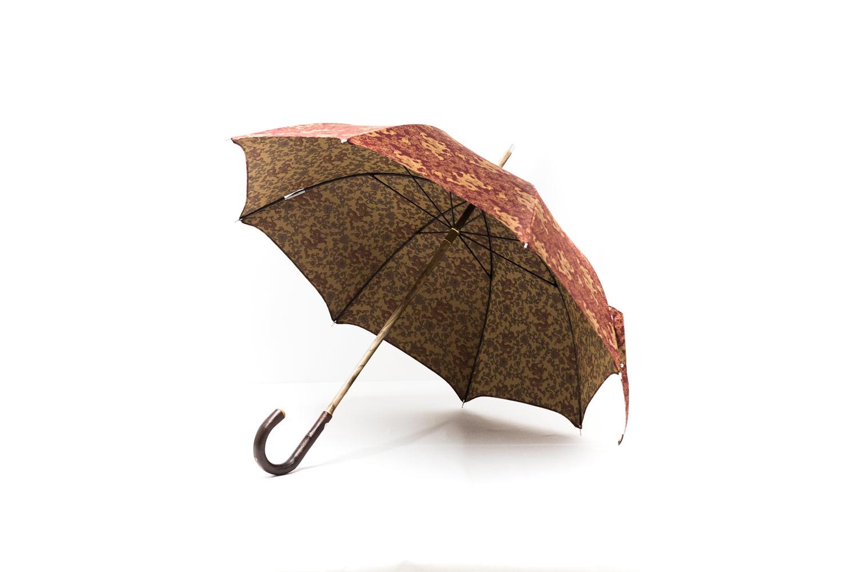 Parapluies de marche