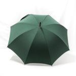 Parapluie droit classique vert