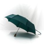 Parapluie pliant classique vert